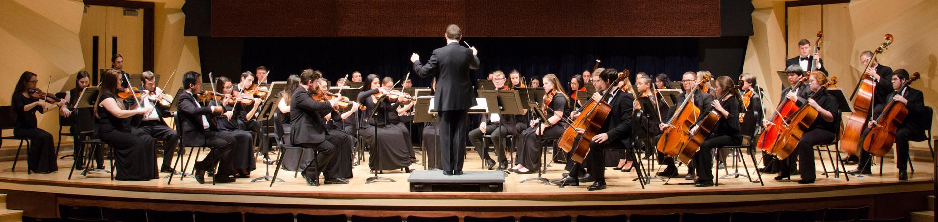 Student Ensemble Series and Recitals