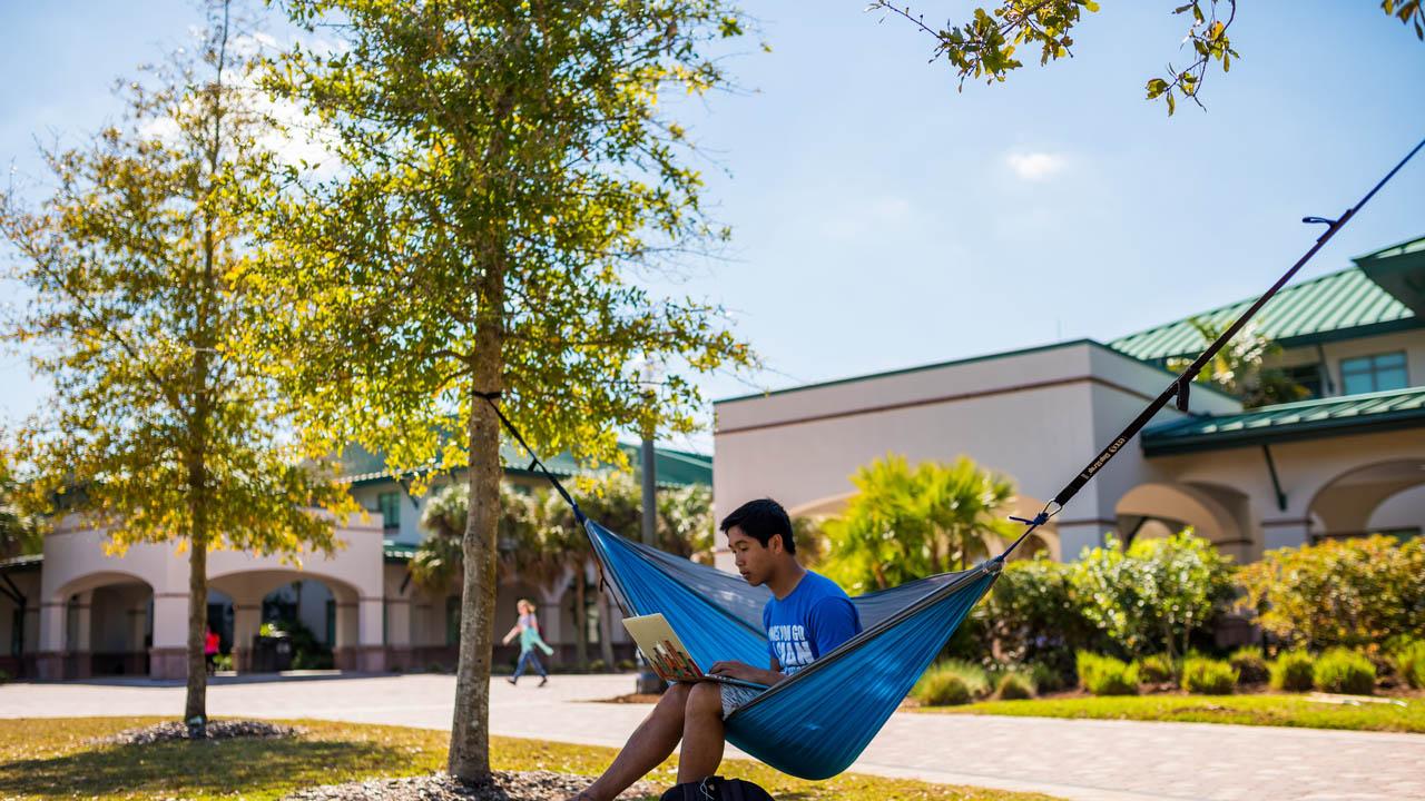 lawn_hammock