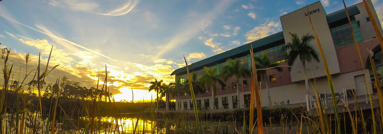 Photo of FGCU Library