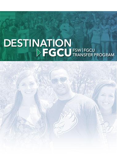 Photo of decorative background for Destination FGCU