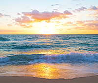 Florida's water thumbnail