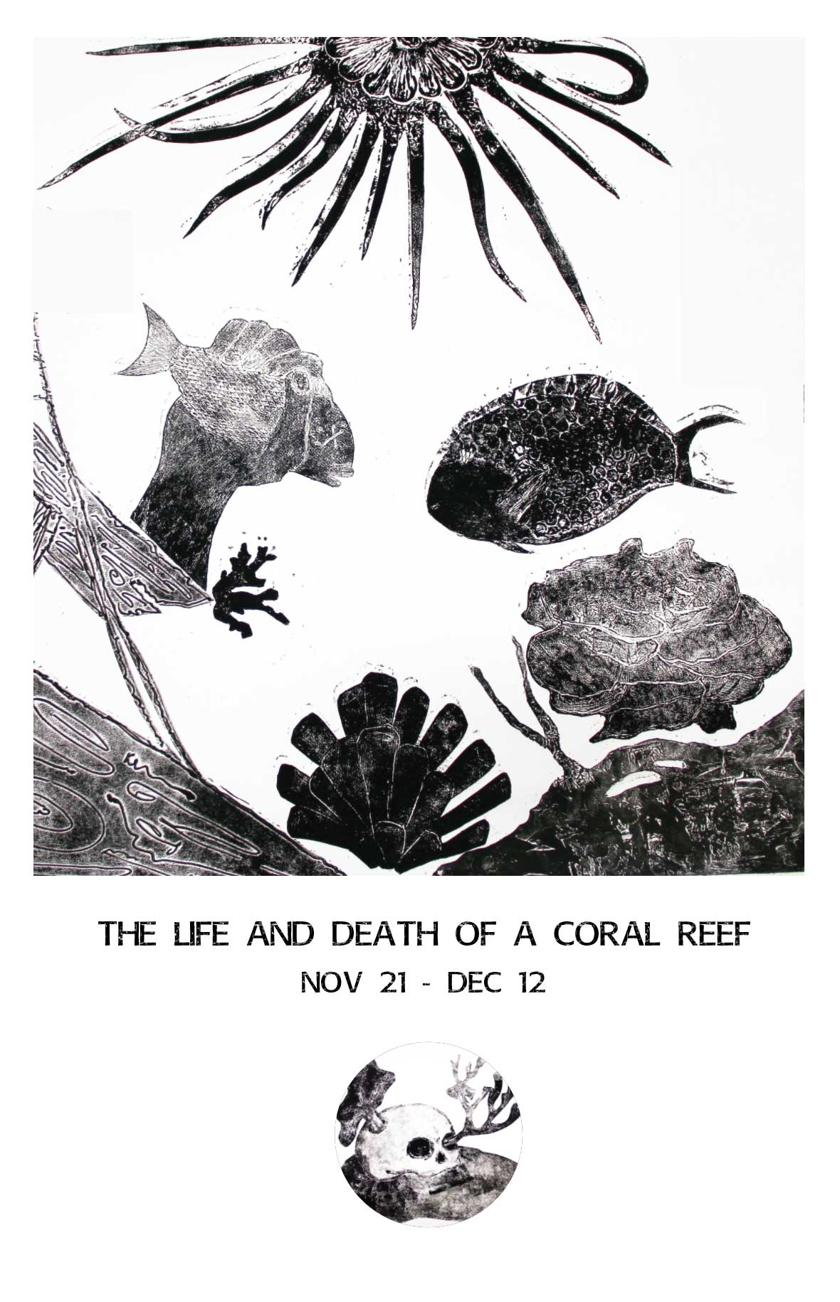 death of a coral reef