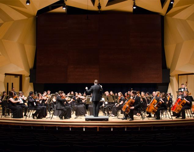 Symphony Orchestra photo