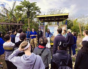 Food Forest Community Fair