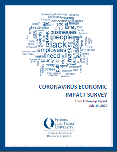 Coronavirus Economic Impact Followup Survey