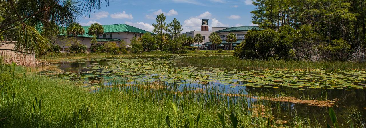 cc grassy lake