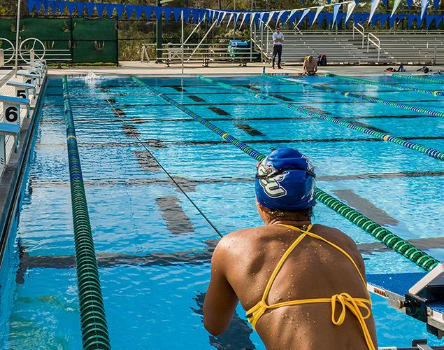 FGCU Aquatic Center showing swimmer in pool.