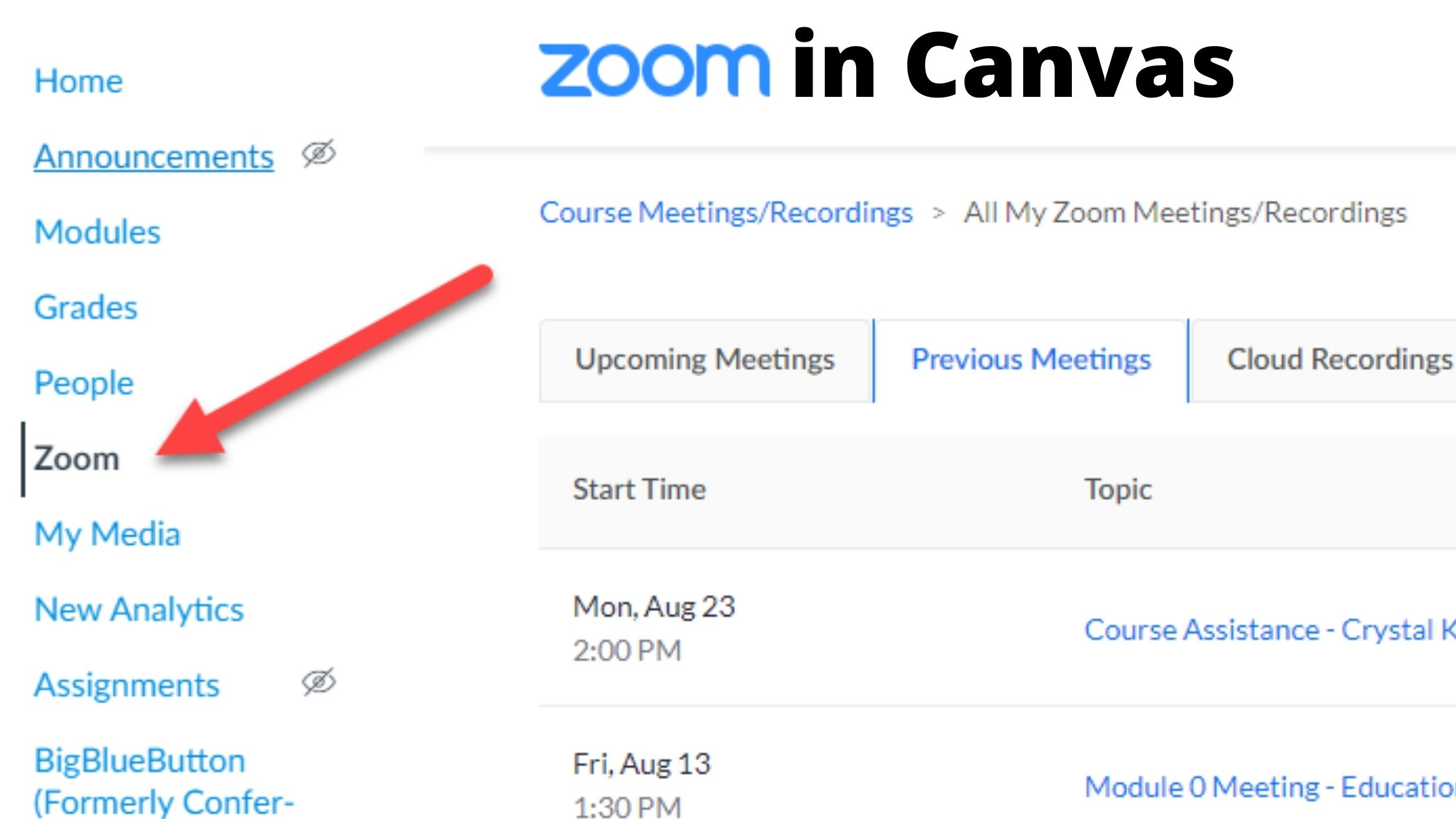 Using Zoom with Canvas