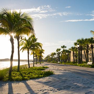 Image of FGCU waterfront
