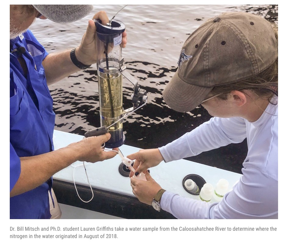 Dr. Bill Mitsch and Ph.D. student Lauren Griffiths take a water sample from the Caloosahatchee River to determine where the nitrogen in the water originated in August of 2018