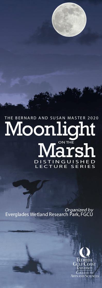 Moonlight on the Marsh 2020 Banner