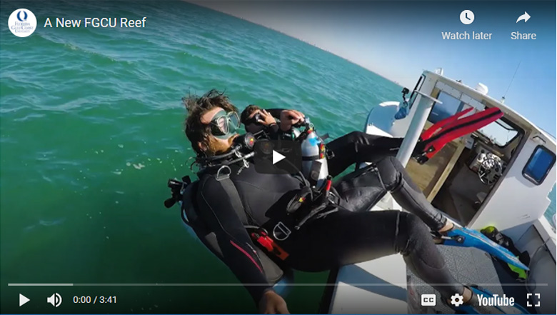 Reef video graphic