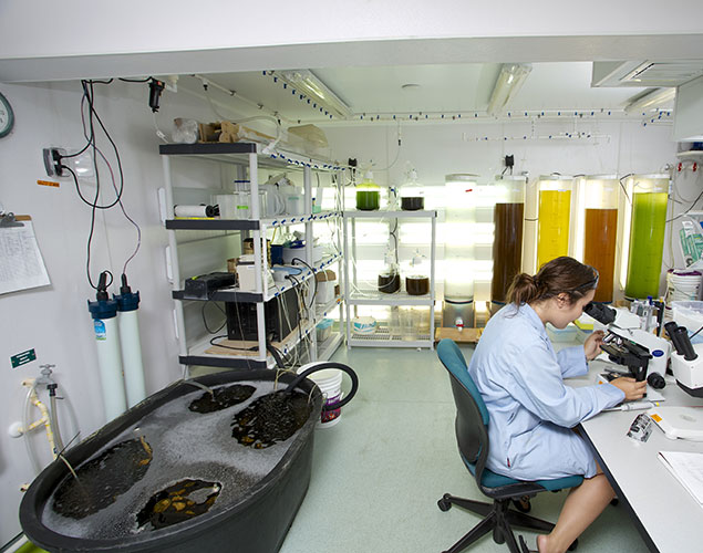 Photo of lab at Vester Marine Field Station